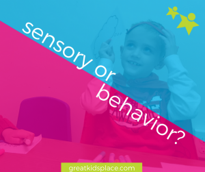 greatkidsplace.com-sensoryORbehavior